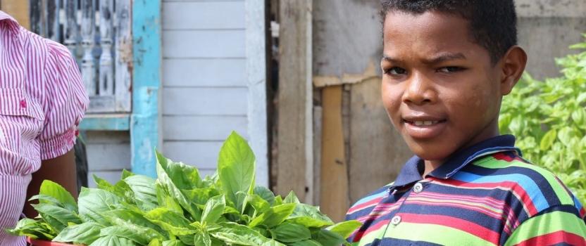 Historias de éxito programa Patios Productivos  Fundación Granitos de Paz